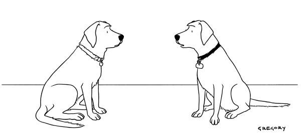 Cartoon of two dogs, as if in conversation