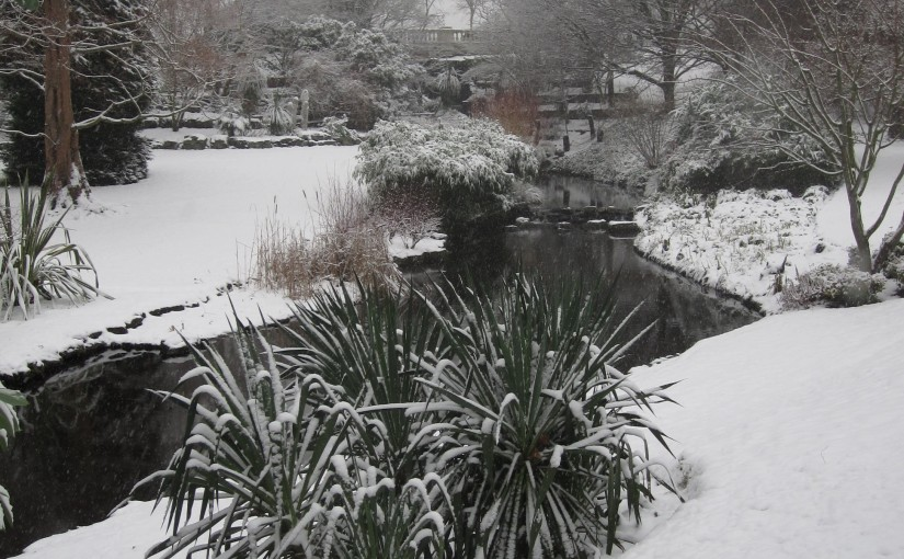 Picture of the Dell in Hyde Park with snow