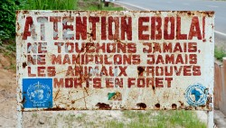 "Picture of sign saying ""Attention Ebola! Ne Touchons Jamais Ne Manipulons Jamais"""
