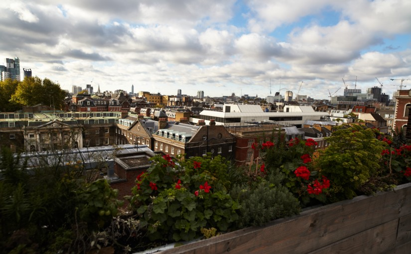 A view of London from The Exchange near London Bridge
