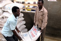 ukaid food wfp